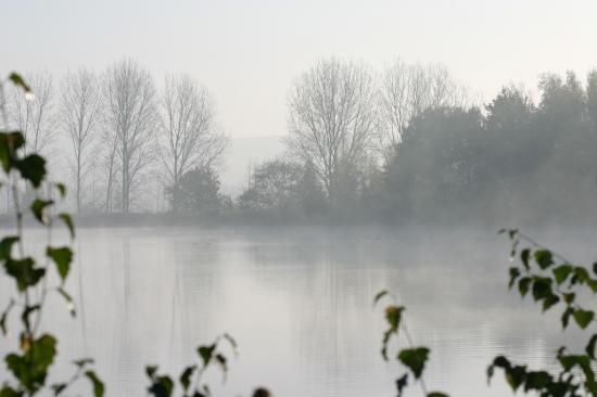 Bassin Est
