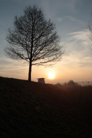Le soleil passe la digue