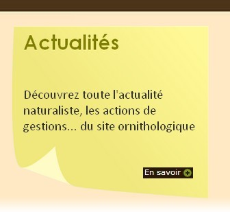 Site Ornithologique départemental des Cinq-Tailles, Actualités