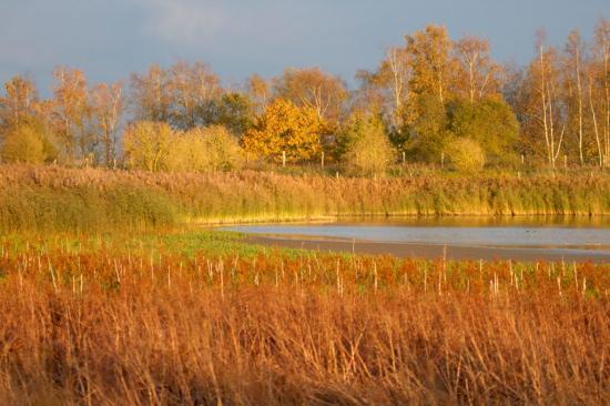 Coucher de soleil sur le Bassin Nord 2