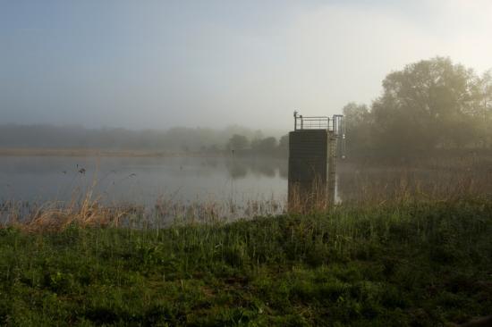 Exutoire Bassin Sud, site ornithologique des cinq tailles
