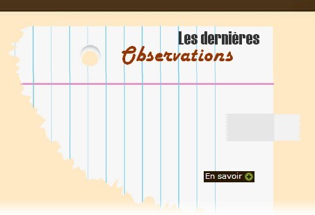 Site Ornithologique départemental des Cinq-Tailles, Les dernières observations